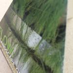 pyramid brochure